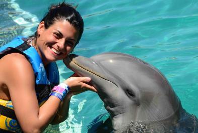 Tours in Puerto Vallarta Dolphin Swim Adventure