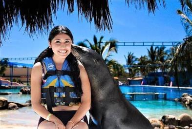 Tours in Puerto Vallarta Sea Lions Encounter