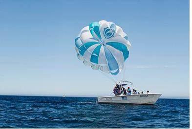 Los Cabos Activities and Sightseeing - Parasailing Single