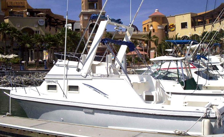 Cabo Sport Fishing On A Private 28 Boat Full Day-152