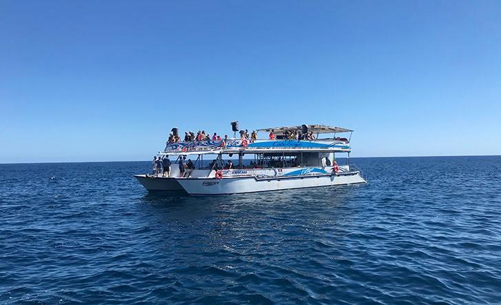 Breakfast Snorkel With Transportation-67