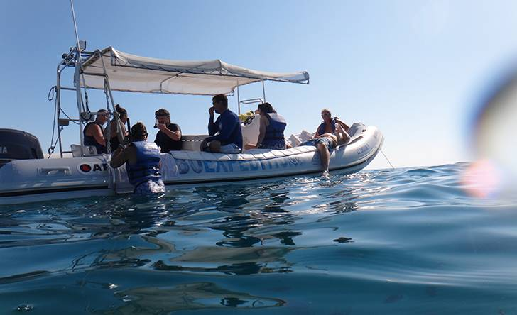 Beach Hopper Snorkel-79