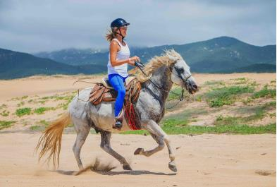 Los Cabos Activities and Sightseeing - Beach And Desert Horseback Riding