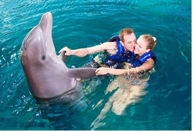 Tours in Cancún and Riviera Maya Couples Dreams Swim