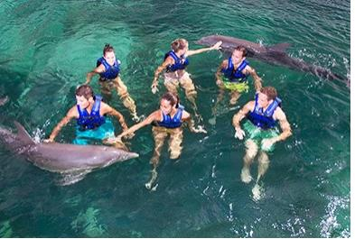 Tours in Cancún and Riviera Maya Delphinus Primax - Xel Ha