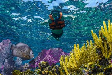 Tours in Cancún and Riviera Maya Snorkel Native Park Tour