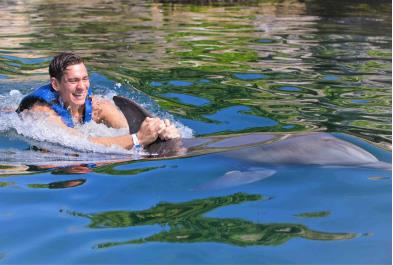 Tours in Cancún and Riviera Maya Dolphin Ride In Riviera Maya