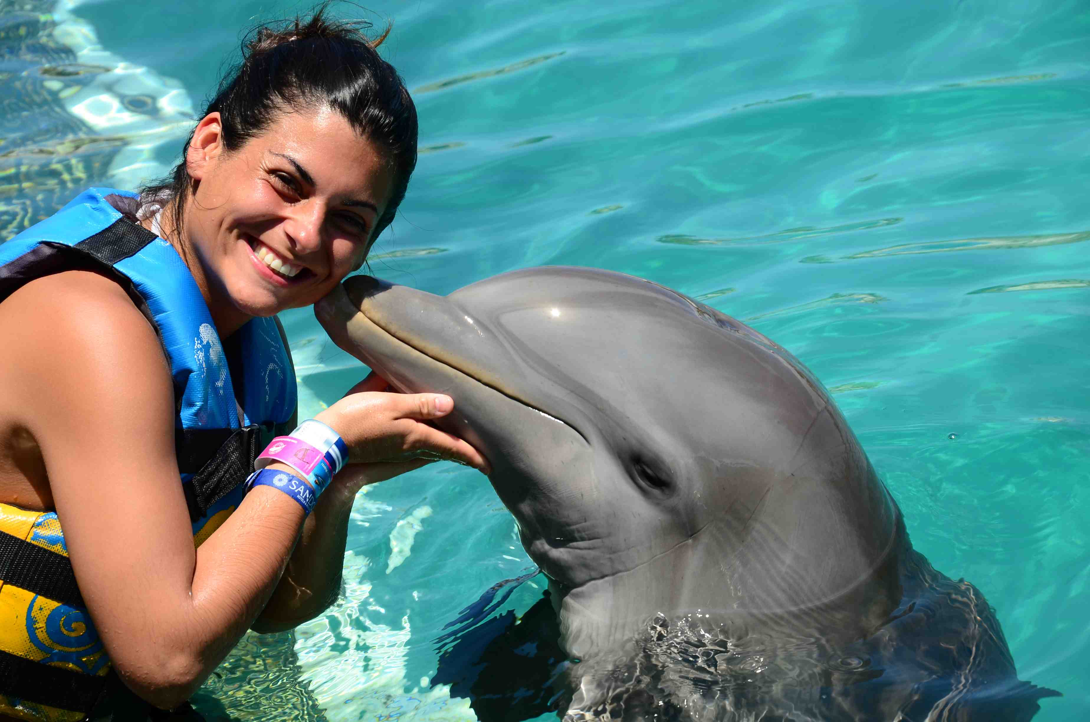 Dolphin Royal Swim - Last Minute Tours in Puerto Vallarta