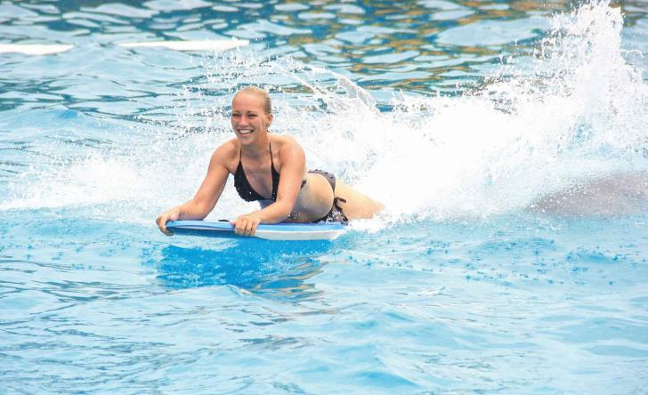 Dolphin Extreme - Last Minute Tours in Puerto Vallarta
