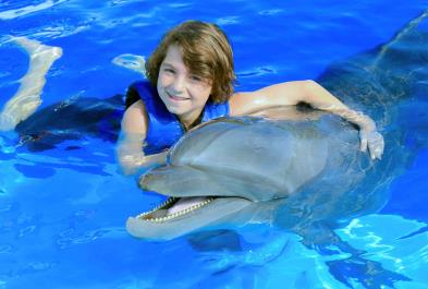 Dolphin Connection - Last Minute Tours in Puerto Vallarta