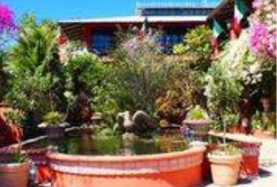 Botanical Garden - Last Minute Tours in Puerto Vallarta