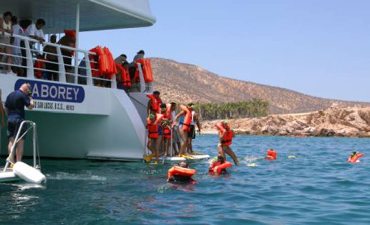 Snorkeling Tour - Last Minute Tours in Los Cabos
