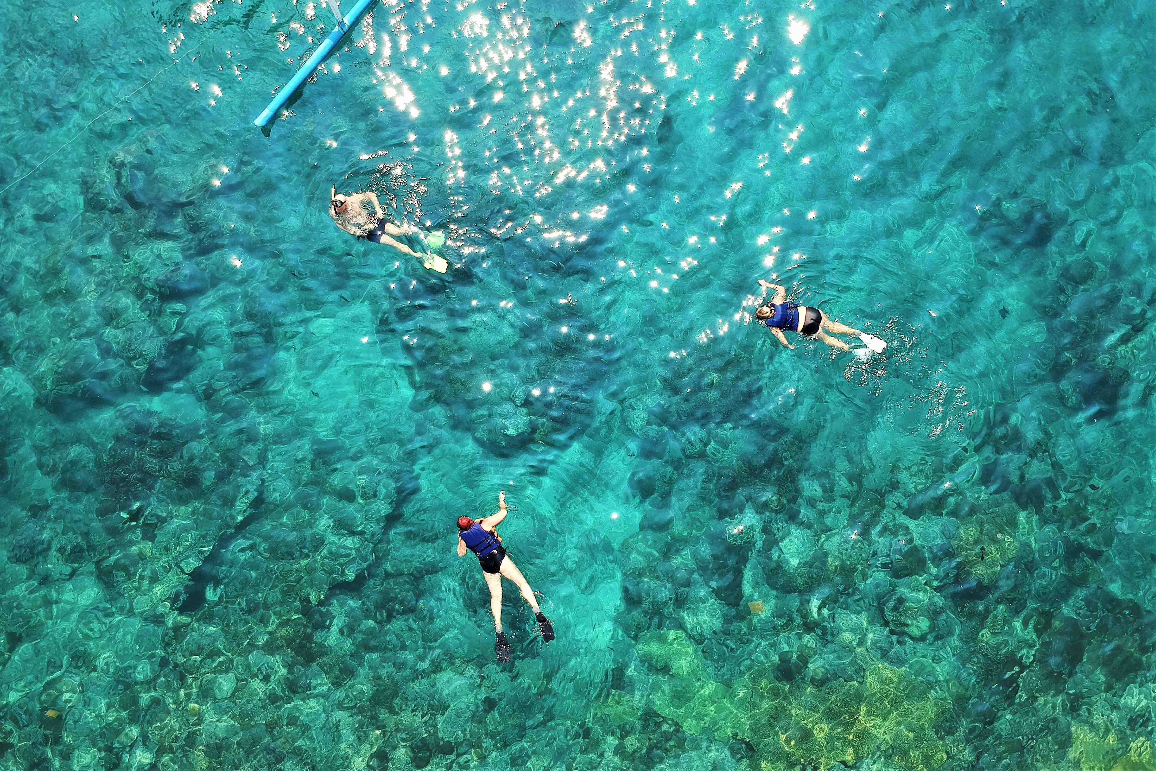 Snorkel And Sailing Adventure - Last Minute Tours in Los Cabos