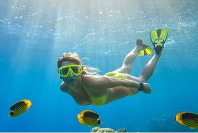 Deluxe Snorkeling At The Aquarium Of The World - Lunch Included - Los Cabos sightseeing and activities