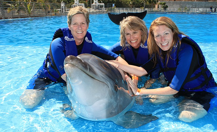 Dolphin Signature Swim-63 - Last Minute Tours in Los Cabos