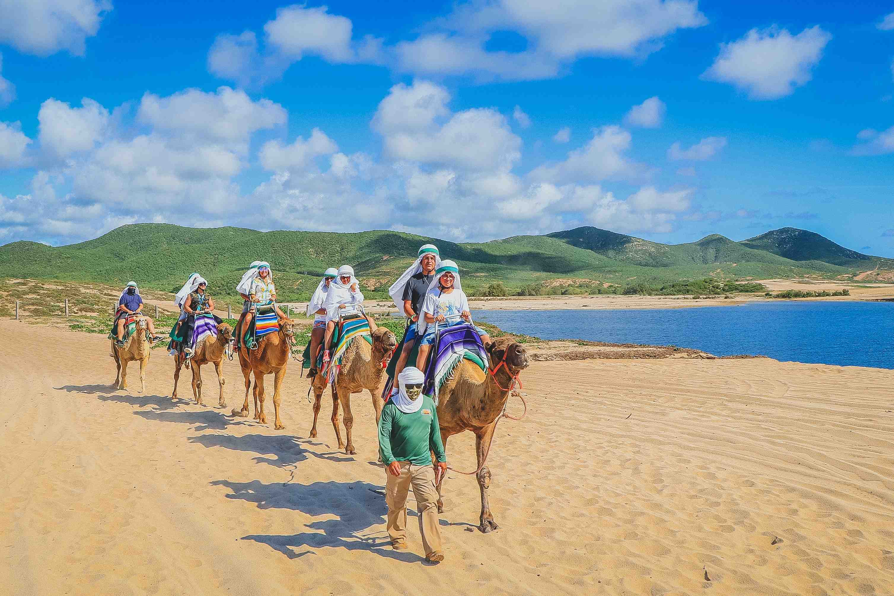 Camel Ride And Encounter - Last Minute Tours in Los Cabos