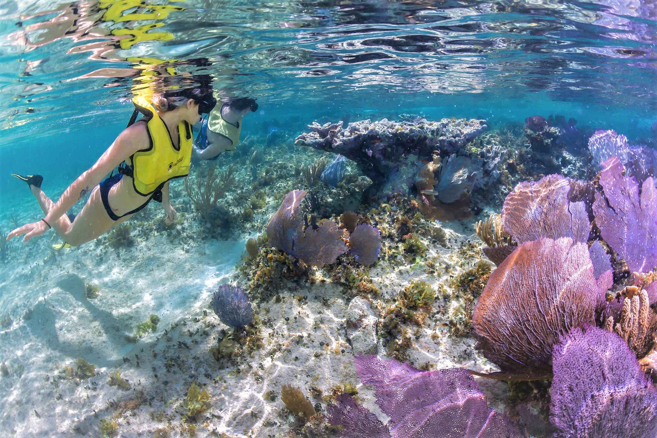 Mayan Heritage Of Cozumel Tour - Last Minute Tours in Cancún and Riviera Maya