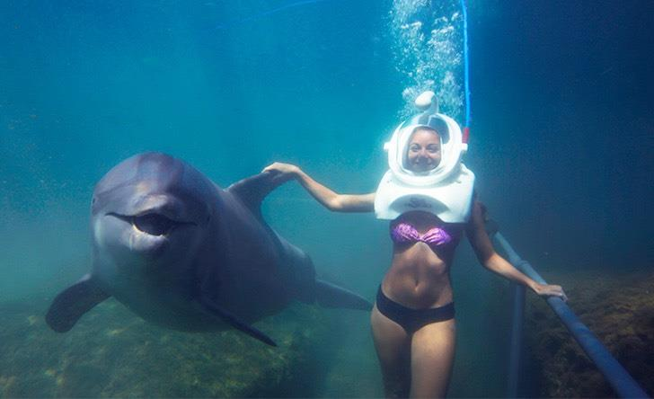 Delphinus Trek Riviera Maya - Last Minute Tours in Cancún and Riviera Maya