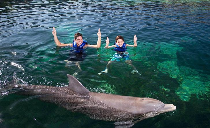 Delphinus Primax - Xel Ha - Last Minute Tours in Cancún and Riviera Maya