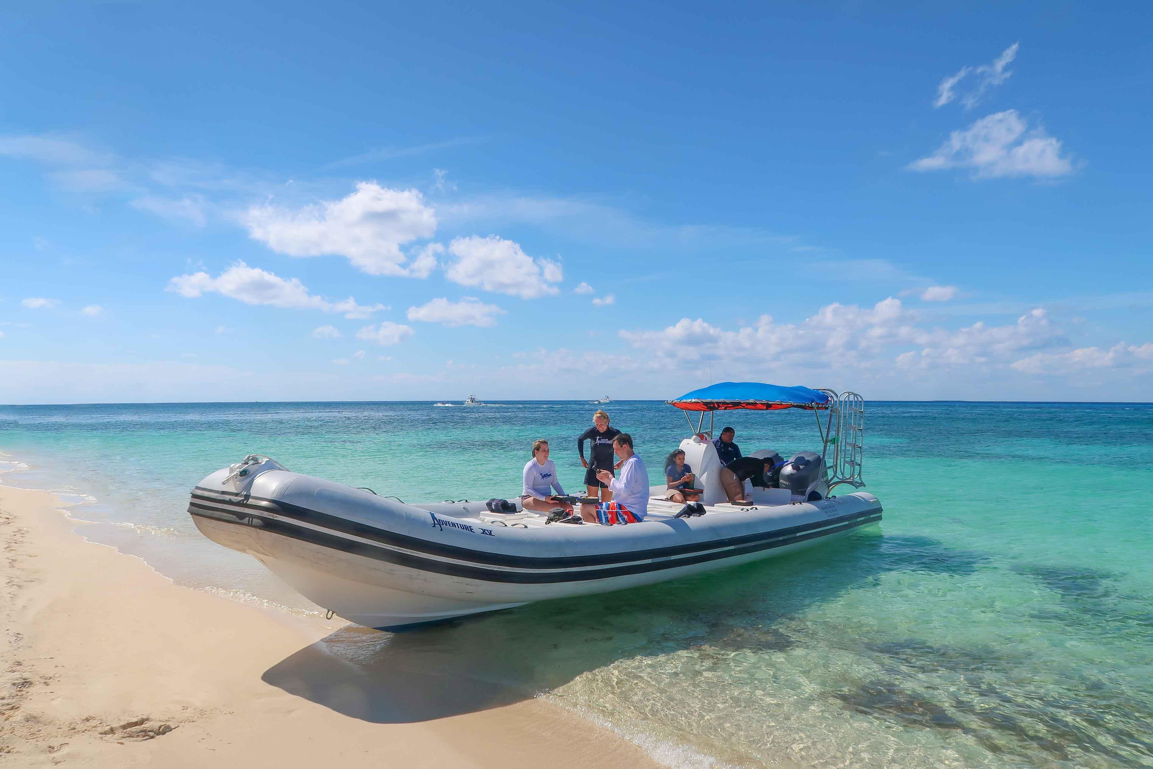 Sea Safari Tour - Last Minute Tours in Cancún and Riviera Maya