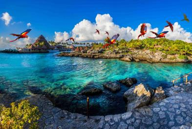 Tours in Cancún and Riviera Maya Admission To Xcaret Plus