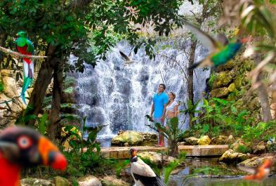 Tours in Cancún and Riviera Maya Tour Xcaret Cancun Plus