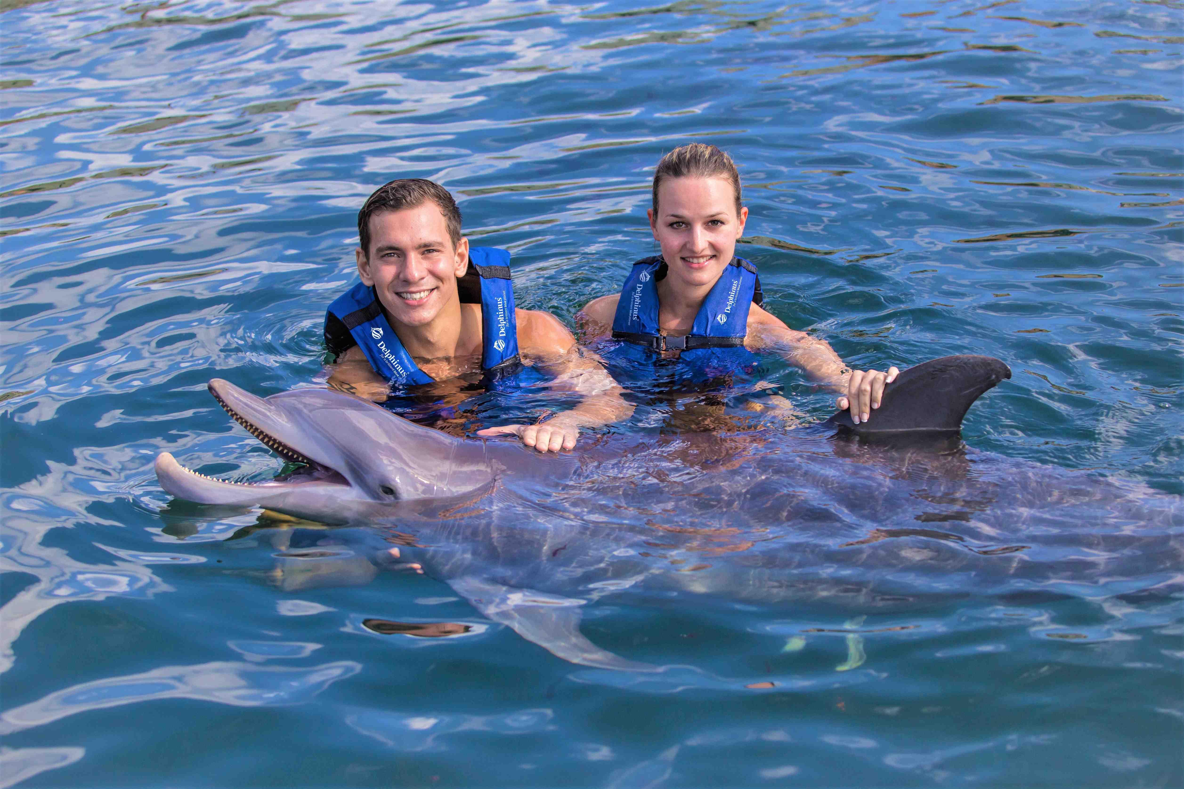 México Travel Solutions Dolphin Splash In Riviera Maya